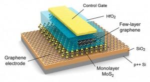 graphene cells